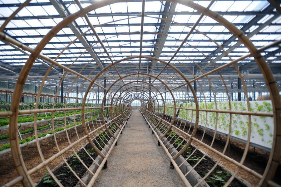 包括1000亩玻璃结构的科技观光