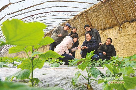 庄浪县对农民进行温室大棚蔬菜种植技术培训